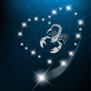 Der Skorpion und die Liebe