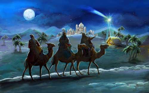 Weihnachtsstern